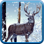 Winter Forest Live Wallpaper 1.0.4