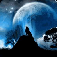 Ícone do 3D Lobo