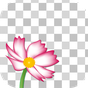 Edge Tracer -Remove background 1.4.0