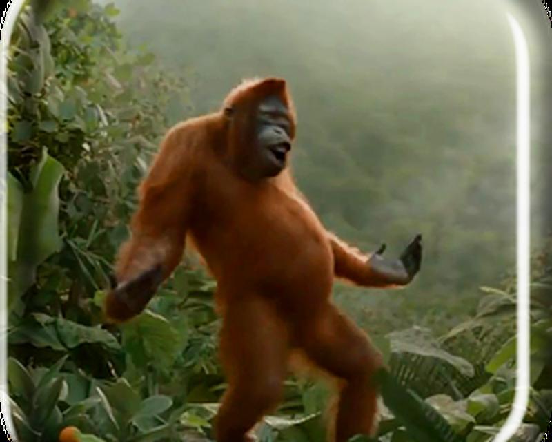 Crazy monkey на андроид скачать