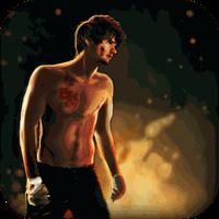 Ícone do apk Street Fighting 3D