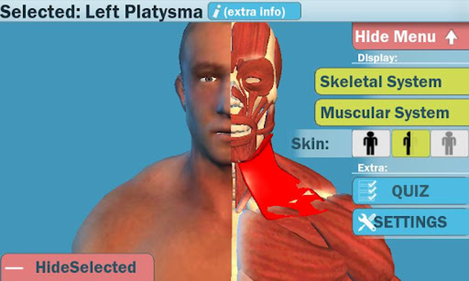 Easy Anatomy 3dlearn Anatomy Android Free Download Easy Anatomy
