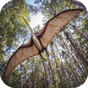 Pterosaur Flight Simulator 3D 1.321