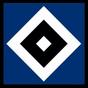 3D Hamburger SV Live Wallpaper 1.50 APK