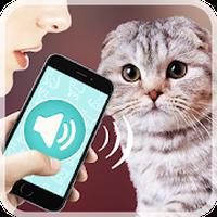 APK-иконка Переводчик на кошачий язык