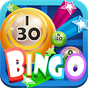 Bingo Fever - Free Bingo Game 1.14