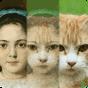 Zooface - GIF Animal Morph 1.3.2