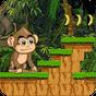 Jungle Monkey 3
