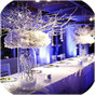 Wedding Decoration Ideas 2.4