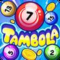 Tambola 1.0
