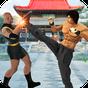 süper kahraman kung fu kavga şampiyon 1.0