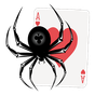Spider Solitaire HD 4.95