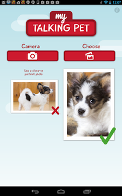 My Talking Pet App Free Download