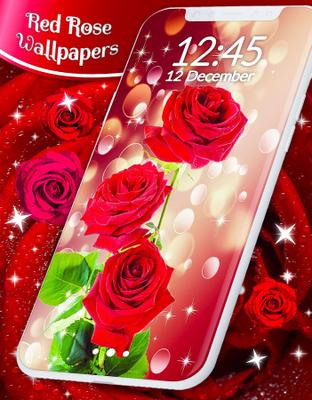 Red Rose Live Wallpaper Image