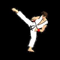 Final Karate (free) icon