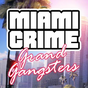 Miami Crime: Grand Gangsters  APK