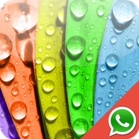 Colors Wallpapers for Chat Simgesi