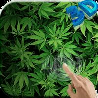 Icône apk Marijuana Fond d'écran animé