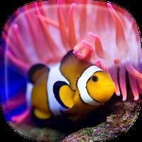 Ícone do Peixes do Oceano Papel de Parede Animado