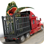 Dinosaur Angry Zoo Transport