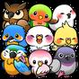 Bird Life  -Burung Hidup - 1.5.8