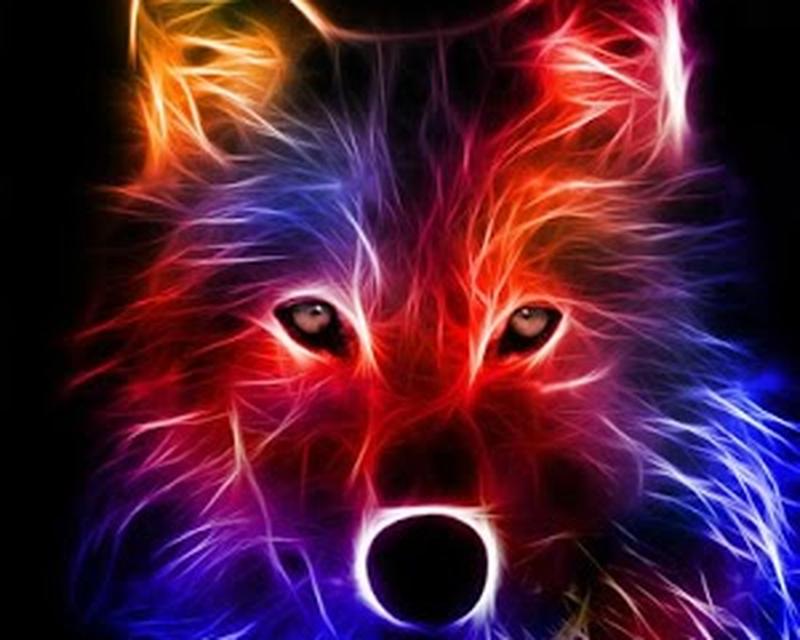 Papel de parede Animado lobo
