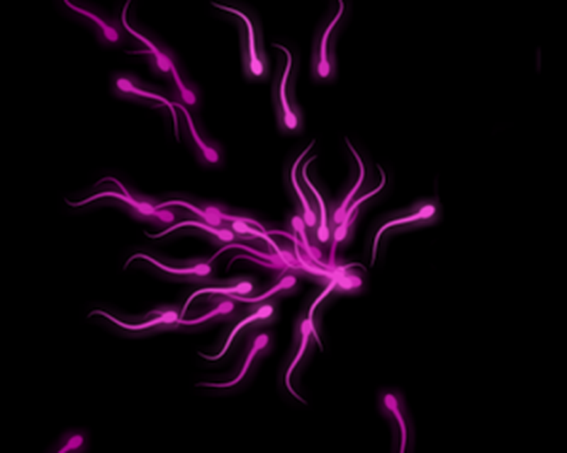 Sperm Live Wallpaper Android Quick Apps Androidout