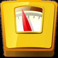 Gewichtstagebuch, BMI