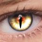 FoxEyes - Change Eye Color 2.7.5
