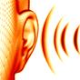 Ear training. Ritmo e melodia 1.0.15