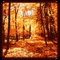 Papel de parede de outono