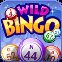 Ícone do apk Wild Bingo - Jogos GRÁTIS