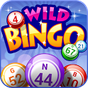 Wild Bingo - Jogos GRÁTIS  APK