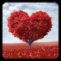 Love Tree Live Wallpaper apk icon