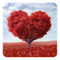 Love Tree Live Wallpaper 3.0 APK