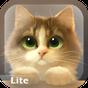 Tummy The Kitten Lite 1.3.1