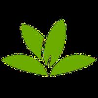 Pl@ntNet Pflanzenbestimmung Icon