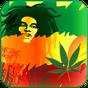 Reggae Rasta Tema de Cores 12.58