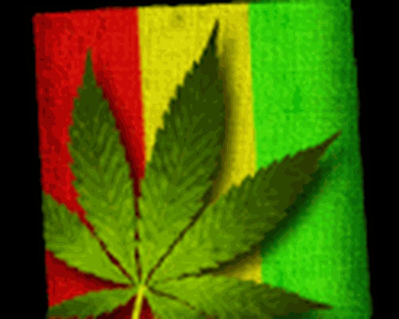 imagen-falling-weed-live-wallpaper-0big.jpg