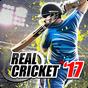 Real Cricket™ 17 2.8.0