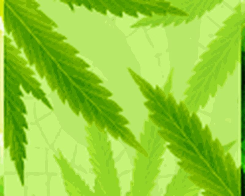 Maryjane Free Live Wallpaper Android Free Download