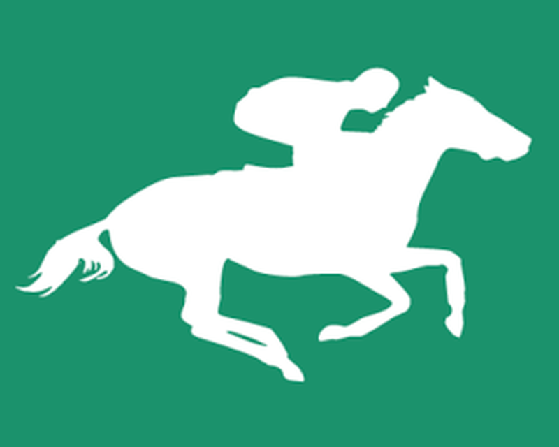 Horse Racing Tips - Computer Data Calculations Android
