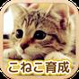 ねこ育成ゲーム - 完全無料!子猫をのんびり育てるアプリ!かわいいねこゲーム! 1.1.0
