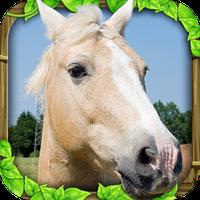 Wild Horse Simulator Simgesi
