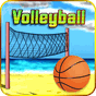 VolleyBall 1.3.1