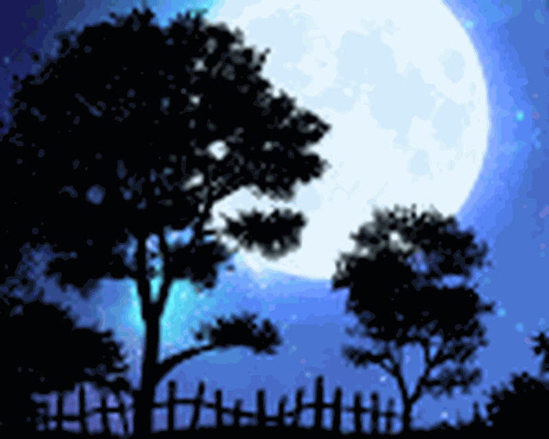 Nightfall Live Wallpaper Free Android Free Download