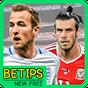 BETIPS Dream League Football 2018 1.0.0 APK