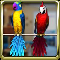 Ikona Rozmowa Parrot Para bezpłatny
