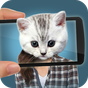 Digitalizador Face O que gato  APK