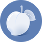 Necta Launcher(senior)  APK